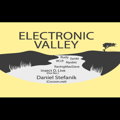 Electronic Valley 2014