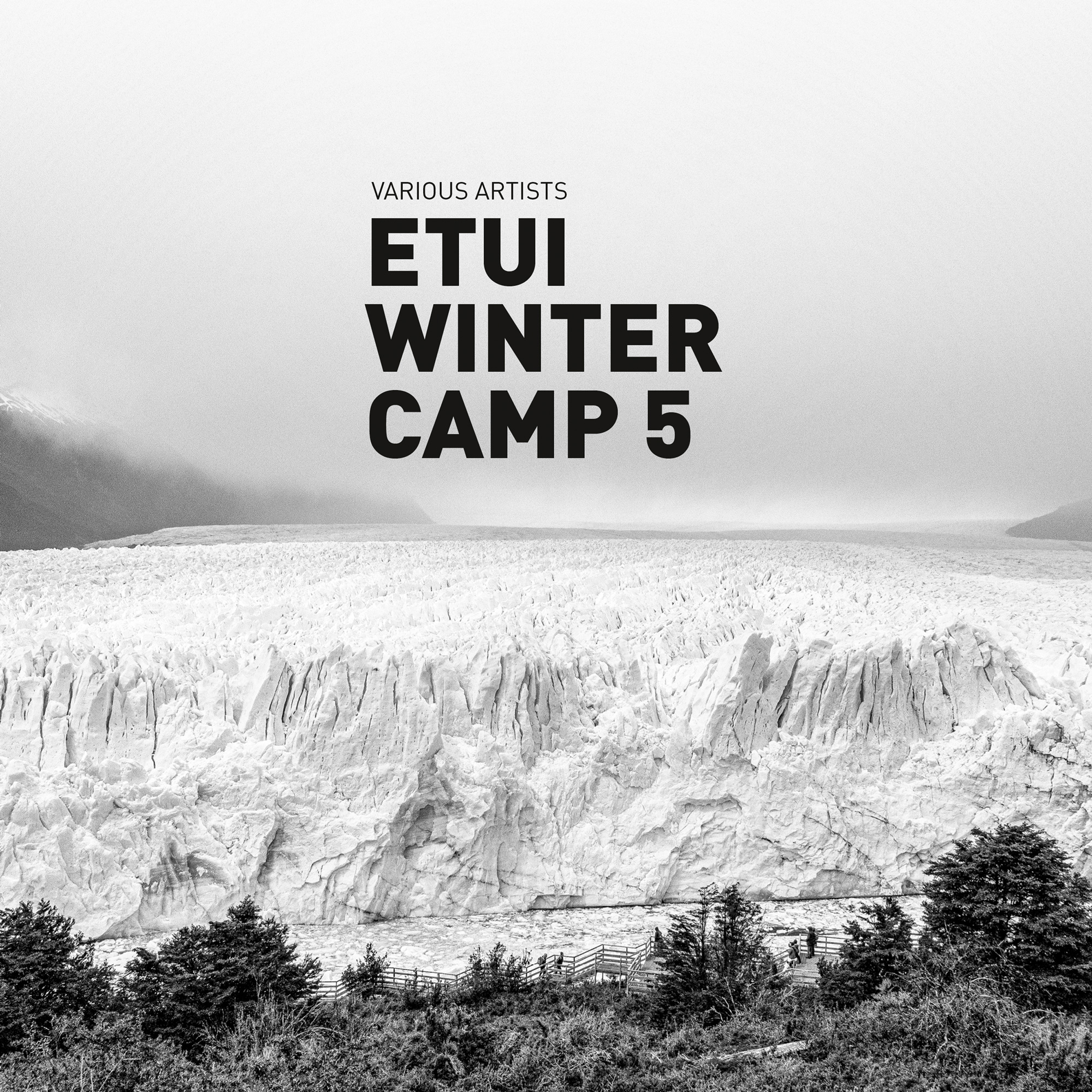 Various Artists - Etui Winter Camp 5