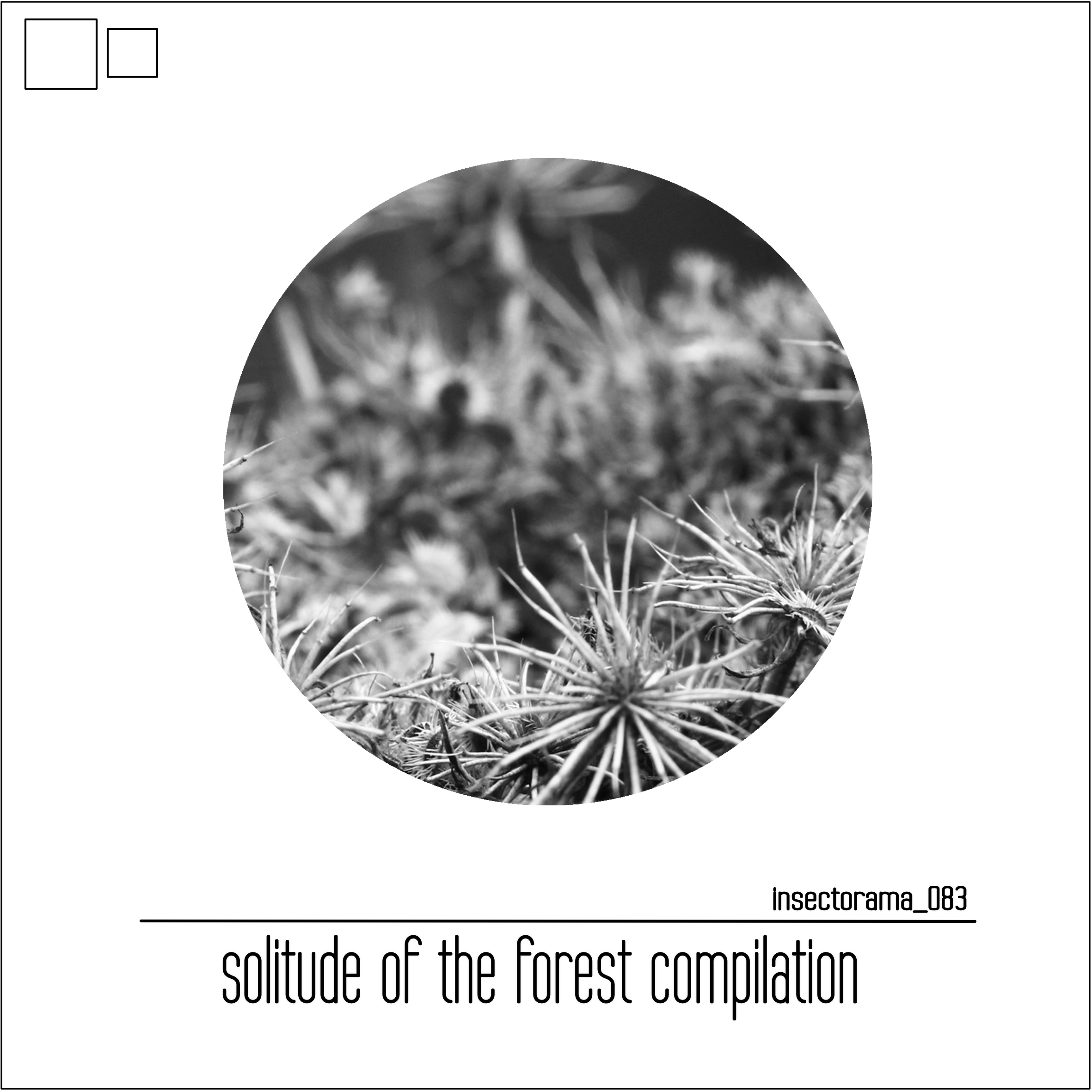 WTX4FAM On Solitute Of The Forest Compilation