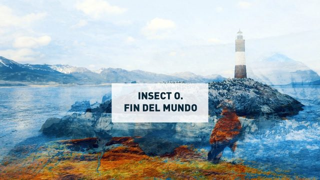 Insect O. - Fin Del Mundo - Official Video